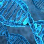 Ένας θαυμαστός καινούριος κόσμος: Γενετική